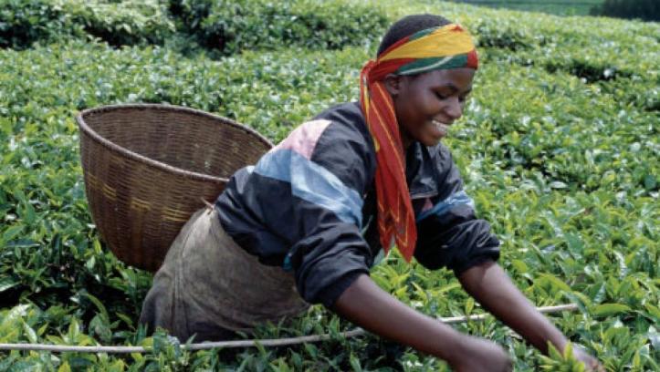 Rwanda-The_0