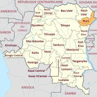 RDC: des incursions d'au moins six armées étrangères depuis le début de l'année 2020.
